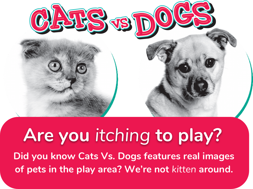 CATS VS DOGS - Are you itching to play? Did you know Cats Vs. Dogs features real images of pets in the play area? We're not kitten around.
